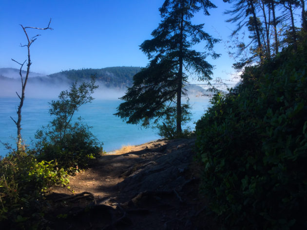 Sweet sweet Deception Pass trails. I miss you.